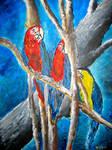parrot oil painting art print