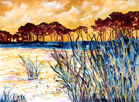 Gulf coast abstract landscape by derekmccrea