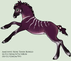 Snjorrir Foal E634 by PrimalInstincts