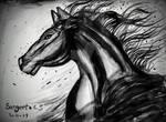 Horse- ink scribbles by Sangeeta1995