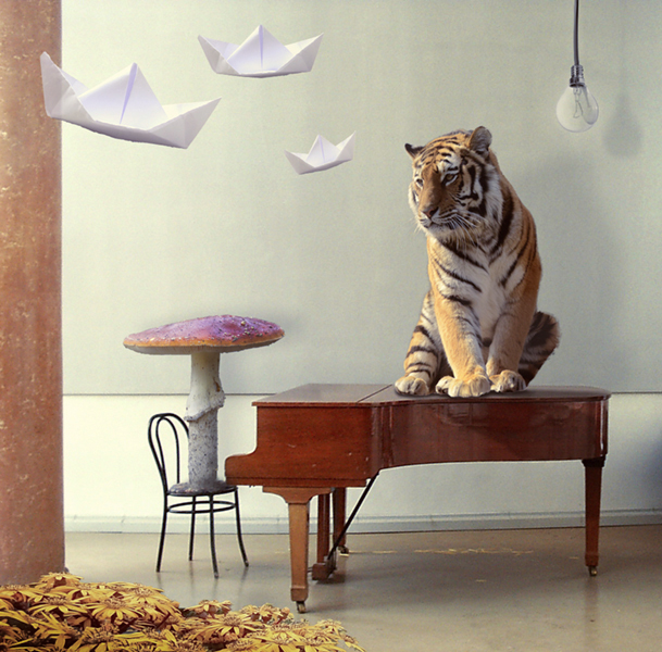 Crazy Tiger Composing by MiaSidewinder
