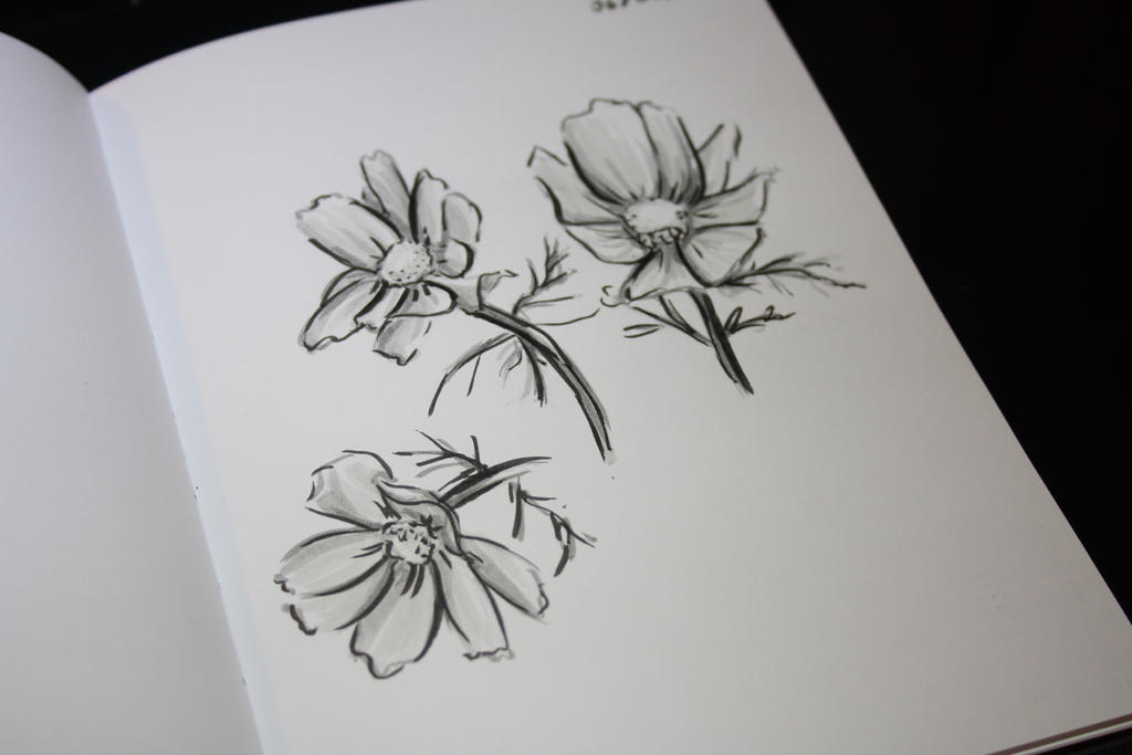 [Flowers] Traditional drawing