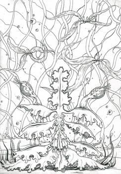 Plantae Divinorium