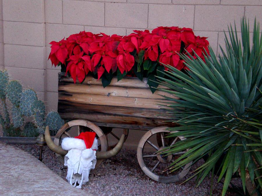 Southwest Christmas I by JulianasGrandma
