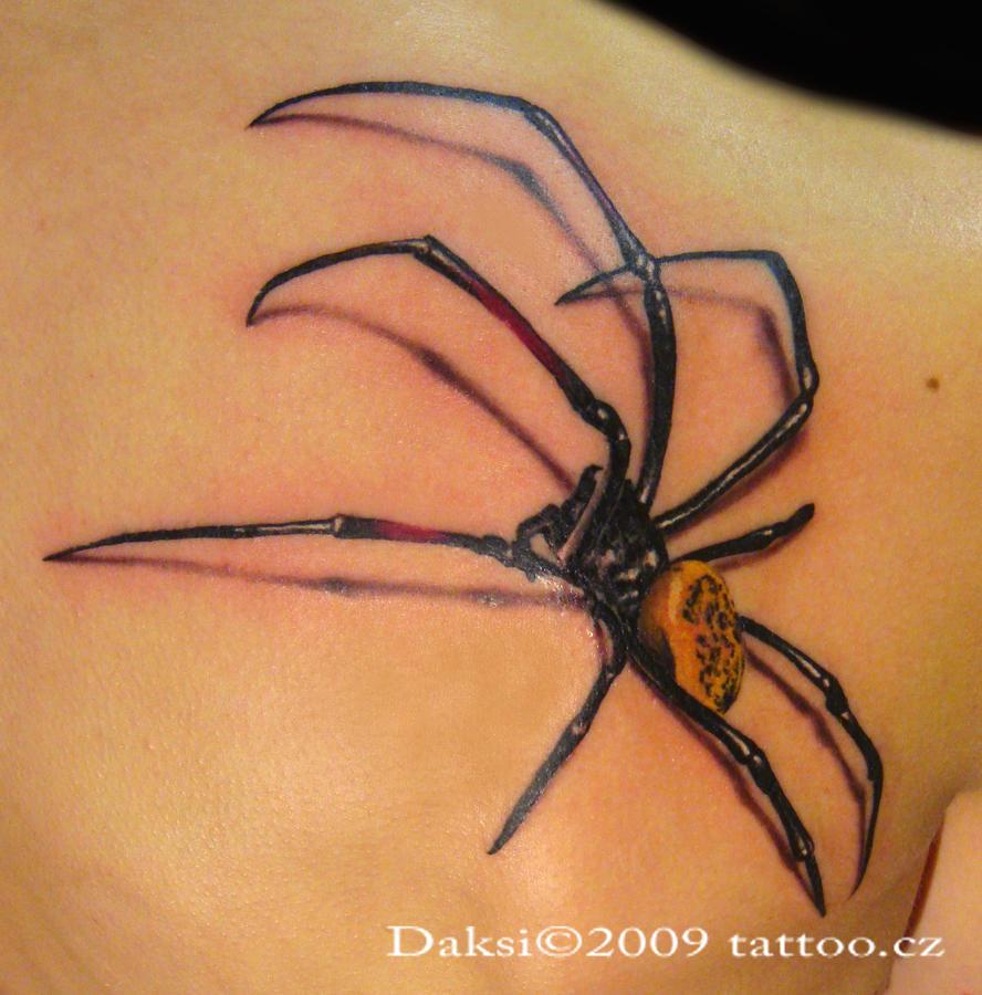 spider Nephyla by Daksi