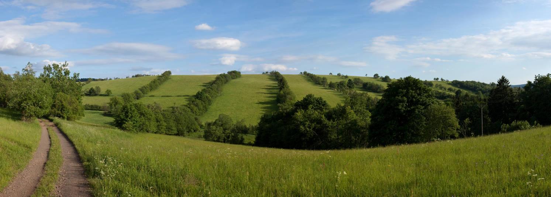 Green fields by drangnel
