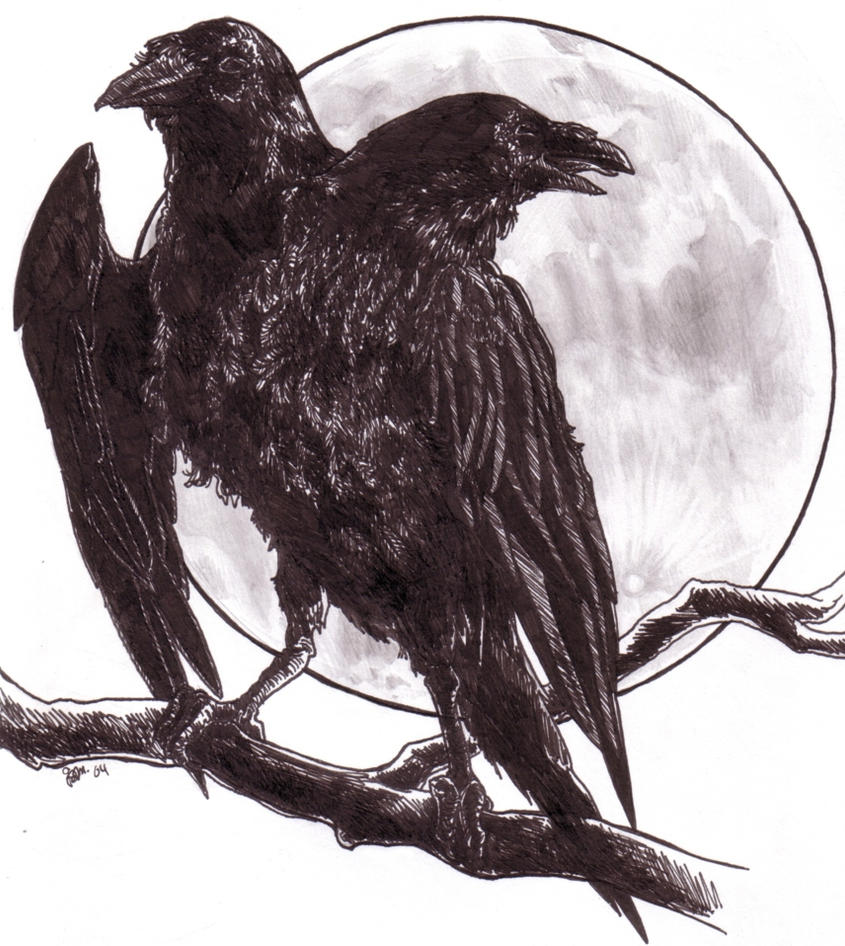 Two headed raven by jamberry on deviantart two headed raven by jamberry biocorpaavc