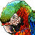 Free Catalina Macaw Icon by AntiDarkHeart