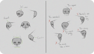 Realistic Canine Nose Tutorial