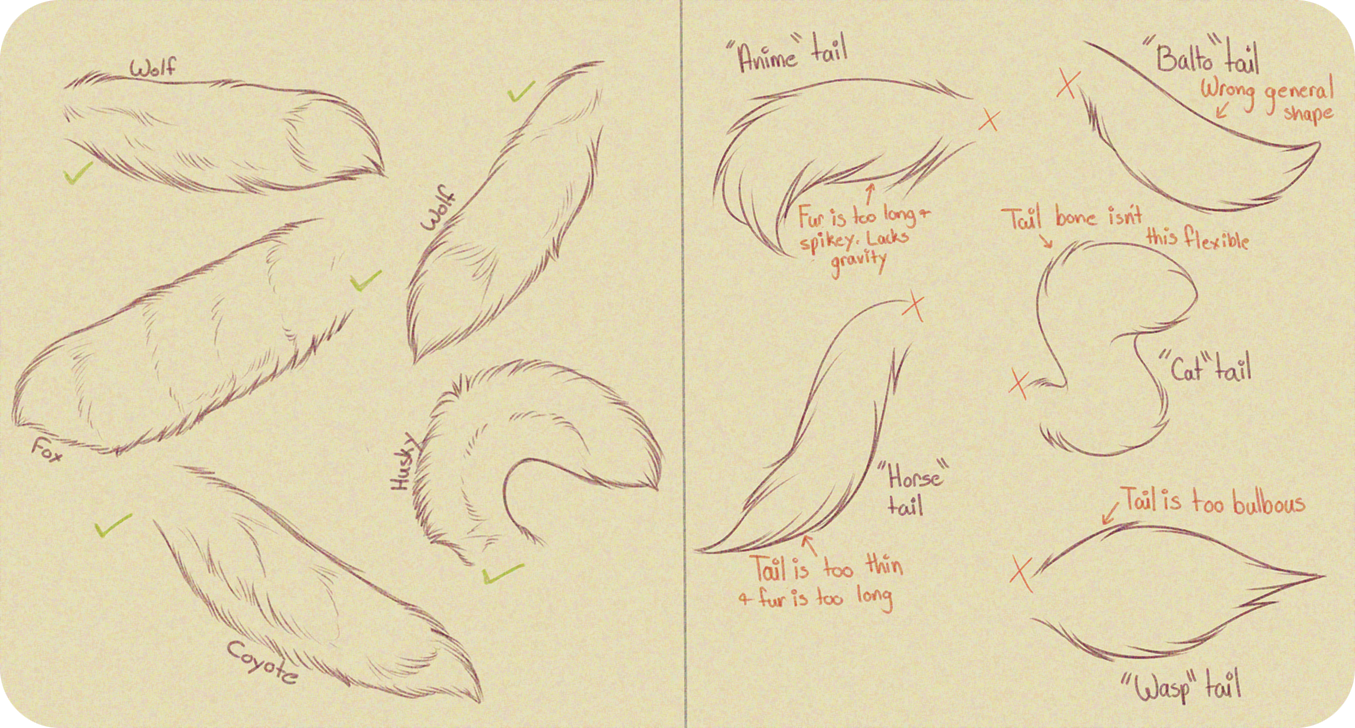 Realistic Canine Tail Tutorial By