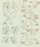 Realistic Canine Ear Tutorial