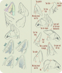 Realistic Canine Ear Tutorial