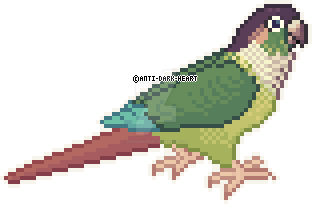 Jenny Conure Sprite - Commission by Anti-Dark-Heart