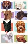Doggo Stream Requests