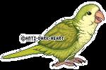 Kiwi Sprite - Commission