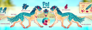 Poi Reference Sheet