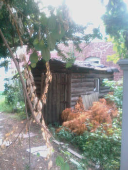 Old shack hidden between buildings
