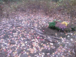 Guerrilla garden with walkway made of sticks by caspercrafts