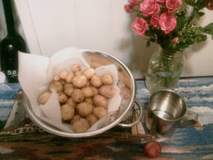 Garden potatoes roses and a tin cup
