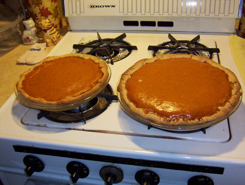 Pumpkin Pies on a white gas stove by caspercrafts