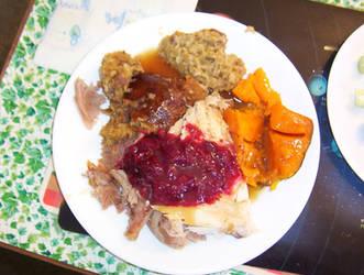 Turkey, Stuffing, Sweet Potatoes, Cranberry, Yum! by caspercrafts