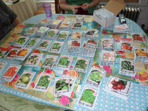 Seed packets spread out on a table