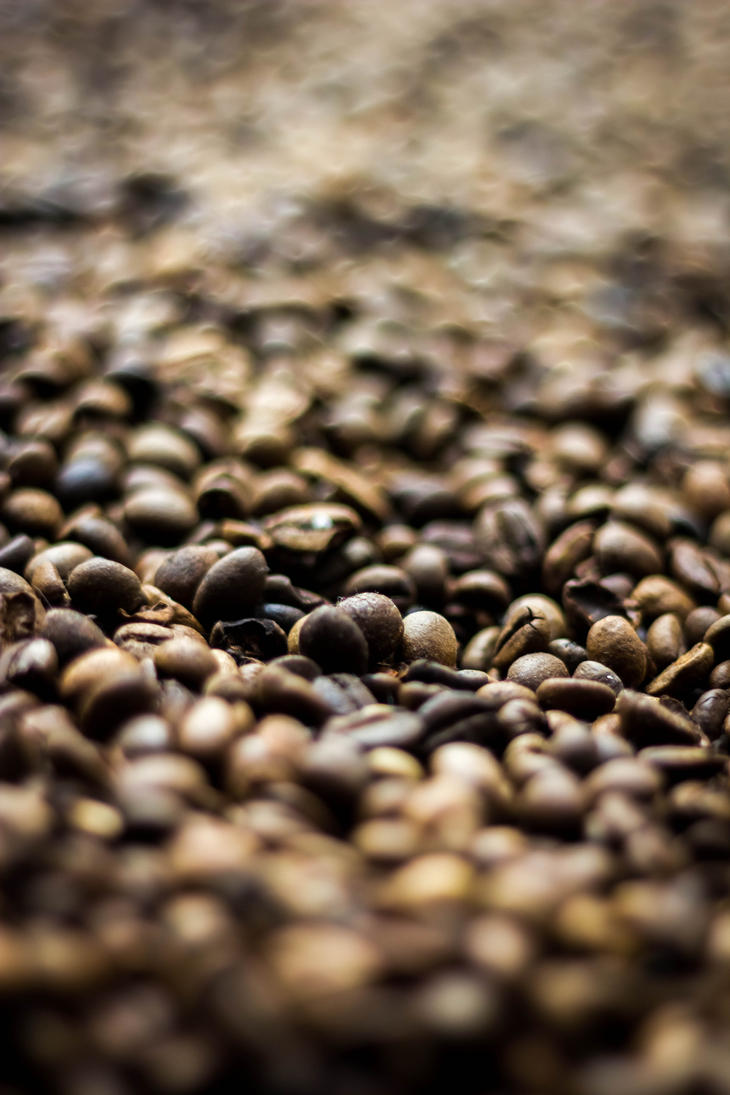 Coffee Beans by Whatsername2609
