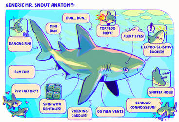 Generic Mr. Snout Anatomy by Astral-Requin