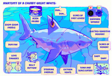 Anatomy of a Chubby Great White by Astral-Requin