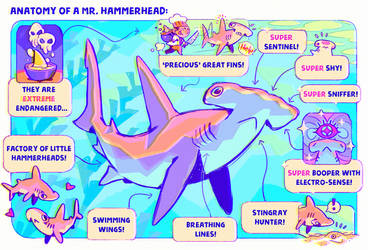 Anatomy of a Mr. Hammerhead by Astral-Requin