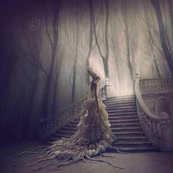 Enchantment by nina-Y
