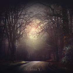 Dreaming of Wolves II by nina-Y