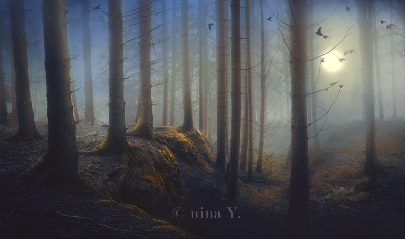 A Grimm Tale by nina-Y