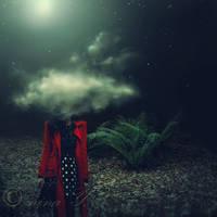 Dreamer by nina-Y