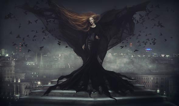 Black Bird's Nightfall