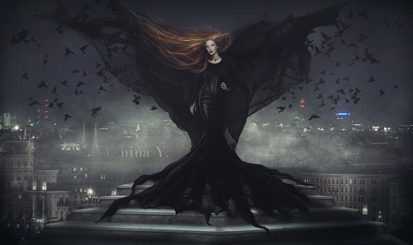 Black Bird's Nightfall by nina-Y