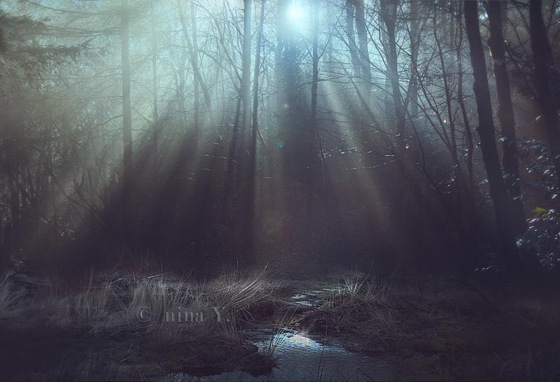 Shadowlands III by nina-Y