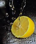 Lemonish III.