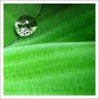 hijau-kemilau by justJAZZ