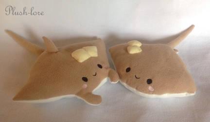 Sea Pancakes