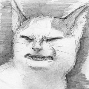 Men-dont-scream's Profile Picture