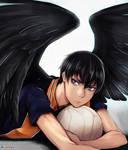 Crow Wings