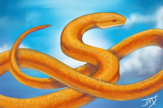 Snake in the Sky