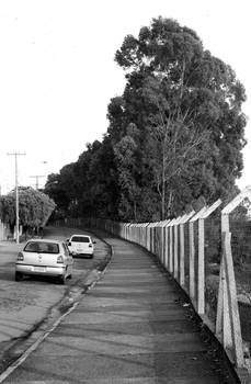 A street in Little Valleys