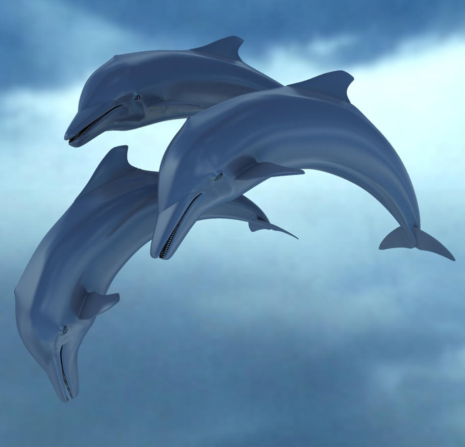 Y Flying Dolphins Dolphins by sim...