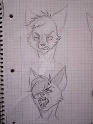 I am working on facial expressions