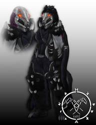 RWBY Grimm Slayer Blake Destiny Hunter armor by Hellmaster6492