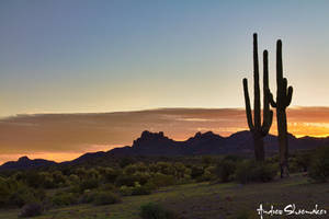 Superstition Sunrise by AndrewShoemaker