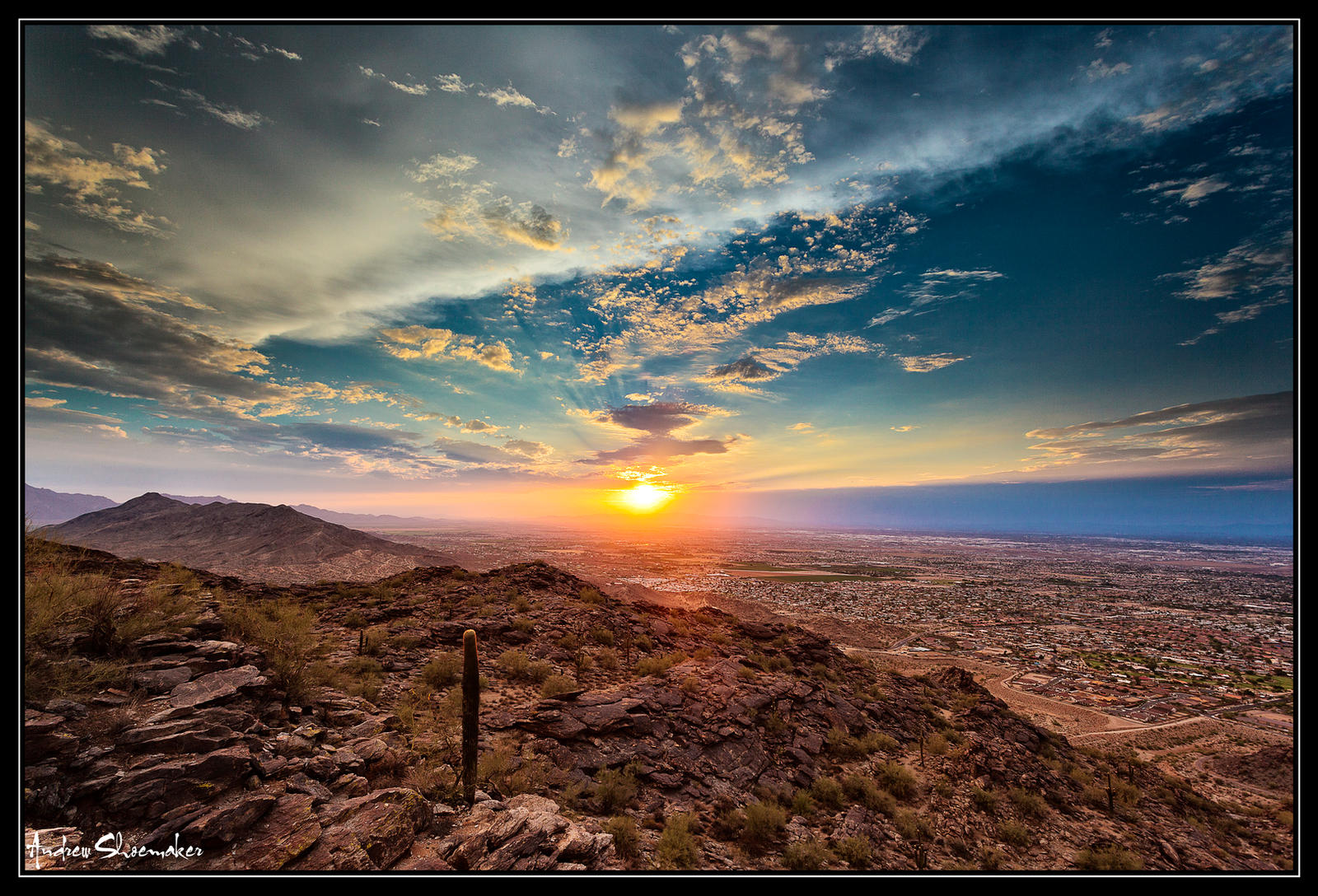 Tranquil Phoenix