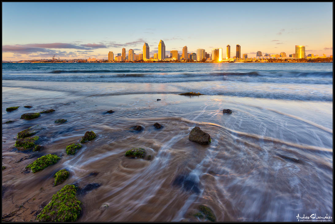 San Diego Gold by AndrewShoemaker